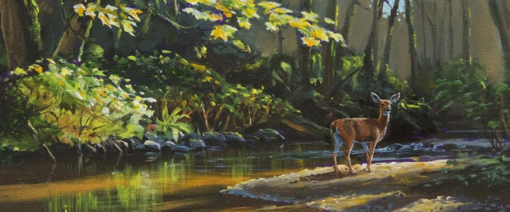 Blacktail Deer: Morning Stroll - Acrylics & Oils - Original Artwork - Acrylics, Oils & Watercolours