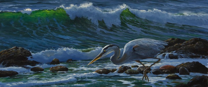 Great Blue Heron: The Risk Taker - Acrylics & Oils - Original Artwork - Acrylics, Oils & Watercolours