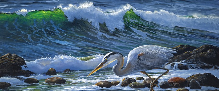 Great Blue Heron: The Risk Taker - Giclees - Artwork Reproductions - Giclees, Paper Prints, Prints and Gift Store