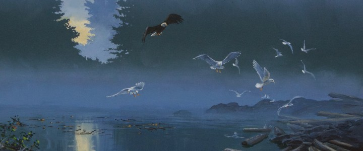 Bald Eagle And Gulls: Disturbing The Peace - Acrylics & Oils - Original Artwork - Acrylics, Oils & Watercolours