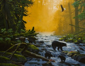 Great Bear Rainforest, British Columbia, Canada