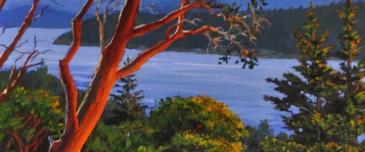 Arbutus: Over Looking Stuart Channel - Acrylics & Oils - Original Artwork - Acrylics, Oils & Watercolours