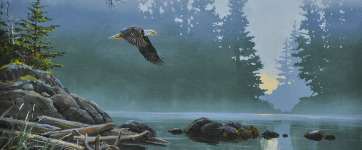 Bald Eagle: Mosquito Harbour on Meares Island - Acrylics & Oils - Original Artwork - Acrylics, Oils & Watercolours