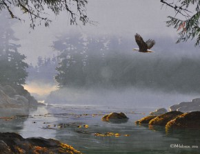 Bald Eagle: Flying Through Morning Mist