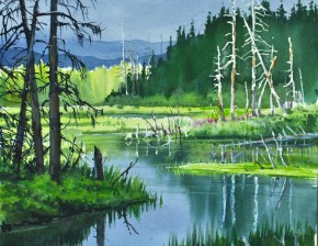 Black Spruce: Northern Pond