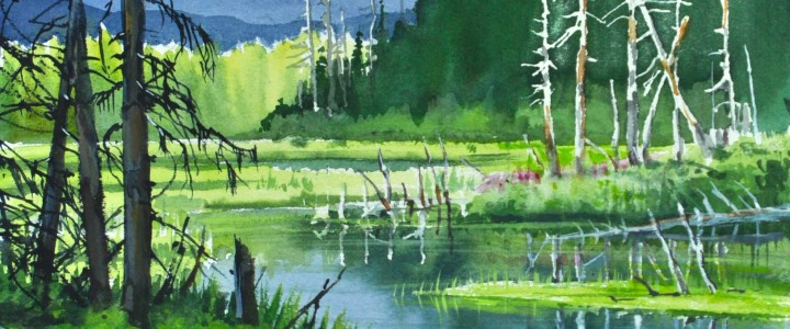Black Spruce: Northern Pond - All Originals Available - Original Artwork - Acrylics, Oils & Watercolours