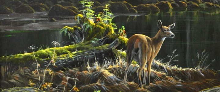 Blacktail Deer In The Estuary (Consignment) - Acrylics & Oils - Original Artwork - Acrylics, Oils & Watercolours
