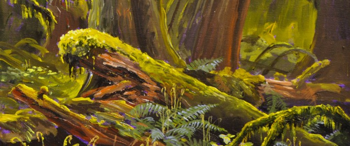 Cathedral Grove  - Acrylics & Oils - Original Artwork - Acrylics, Oils & Watercolours