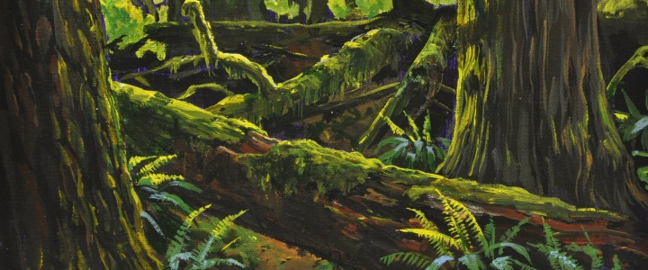 Cathedral Grove ll - Acrylics & Oils - Original Artwork - Acrylics, Oils & Watercolours