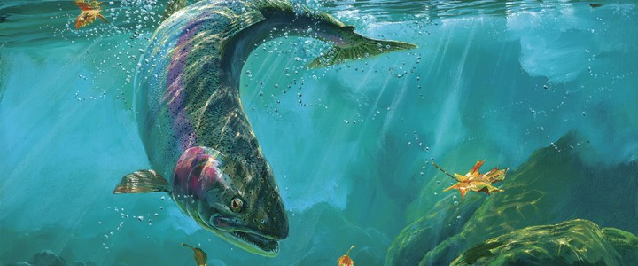 Steelhead Trout: Into The Rapids - Acrylics & Oils - Original Artwork - Acrylics, Oils & Watercolours