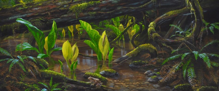 Skunk Cabbage and Red-Legged Frog: First Sign Of Spring - Acrylics & Oils - Original Artwork - Acrylics, Oils & Watercolours