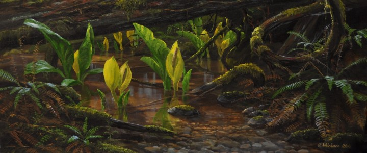 Skunk Cabbage: First Sign Of Spring - Giclees - Artwork Reproductions - Giclees, Paper Prints, Prints and Gift Store
