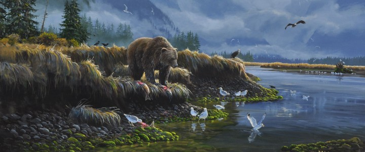 Grizzly On The Khutze River - Giclees - Artwork Reproductions - Giclees, Paper Prints, Prints and Gift Store
