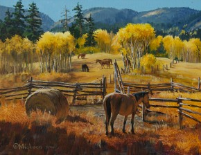 Horses: Hat Creek Corrals