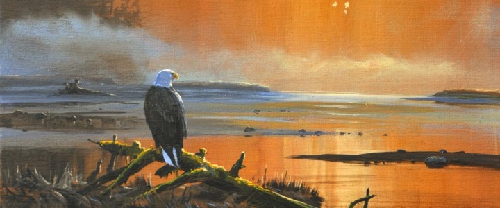 Bald Eagle: Eyeing the Estuary - Acrylics & Oils - Original Artwork - Acrylics, Oils & Watercolours