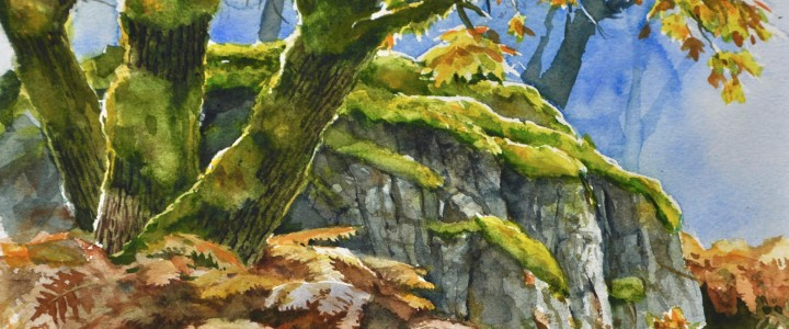 Maples And Bracken - All Originals Available - Original Artwork - Acrylics, Oils & Watercolours