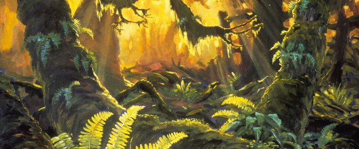 Sword Ferns And Maples - Prints & Art Cards - Artwork Reproductions - Giclees, Paper Prints, Prints and Gift Store