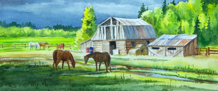 Old Barns Near Quesnel - Watercolours - Original Artwork - Acrylics, Oils & Watercolours
