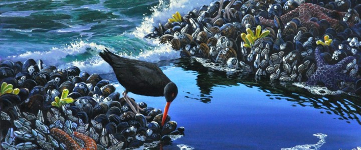 Oyster Catchers: Between Surges - Giclees - Artwork Reproductions - Giclees, Paper Prints, Prints and Gift Store