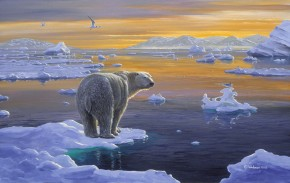 Polar Bear: Edge of Ice
