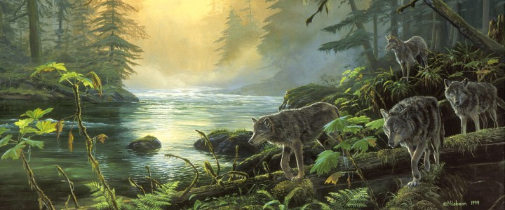 River Wolves - Paper Prints - Artwork Reproductions - Giclees, Paper Prints, Prints and Gift Store