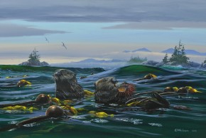 Sea Otters: McMullen Islets