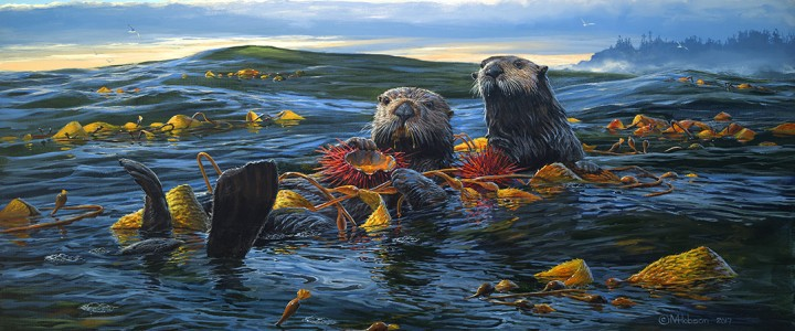 Sea Otters: Breakfast On The High Seas - Giclees - Artwork Reproductions - Giclees, Paper Prints, Prints and Gift Store