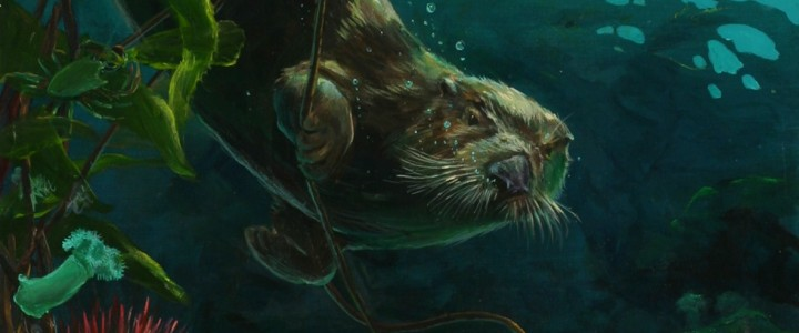 Sea Otters: Hiding in the Kelp - Giclees - Artwork Reproductions - Giclees, Paper Prints, Prints and Gift Store