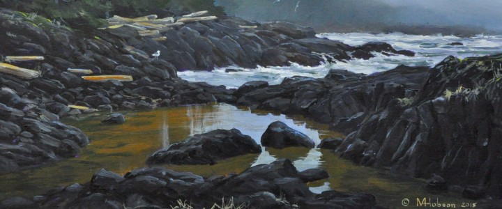 Tide-pool Near Brown's Beach - Acrylics & Oils - Original Artwork - Acrylics, Oils & Watercolours