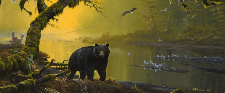 Black Bear: Tranquil River - Art Cards & Blockmounts - Artwork Reproductions - Giclees, Paper Prints, Prints and Gift Store