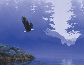 Bald Eagle: Taking Off in the Morning Mist