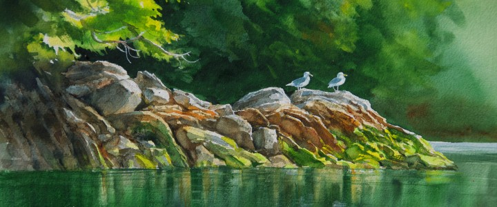 Glaucous Wing Gulls: George And Gertrude - All Originals Available - Original Artwork - Acrylics, Oils & Watercolours