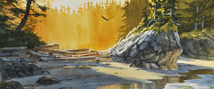 Bald Eagle: Morning Shadows On Sand - All Originals Available - Original Artwork - Acrylics, Oils & Watercolours