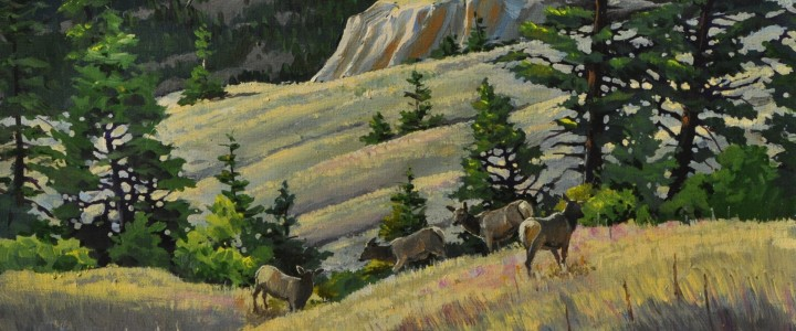 Meadows Near Invermere - Acrylics & Oils - Original Artwork - Acrylics, Oils & Watercolours