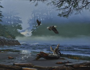 Siwash Cove: Eagles in the Mist